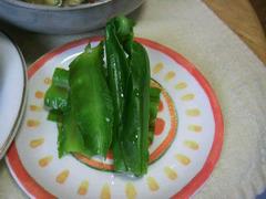 オオタニワタリ&四角豆