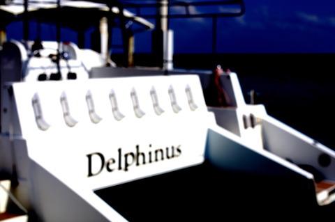デルフィナス