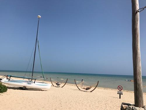 姉妹揃ってビーチのハンモックでキラキラ
