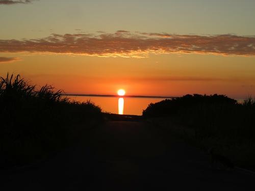 道の向こうの水平線に朝陽が昇る