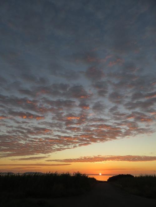 うろこ雲と道の向こうの水平線